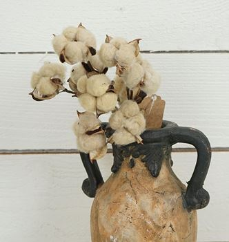 "Picture of Cotton Boll / Ball - Tea Stained Bush / Branch 13"" H"