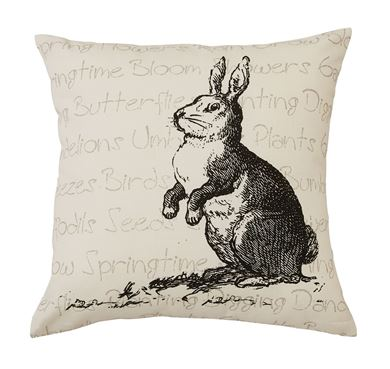 Picture for category Pillow Covers