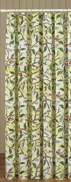 Picture of Bird Song Shower Curtain